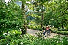 Imagen Central Park Tour