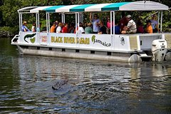 Black River Safari Y-S Falls and Pelican Bar Tour from Negril Hotels