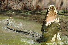 Imagen Hartley's Big Crocodile Feeding Experience from Cairns or Palm Cove