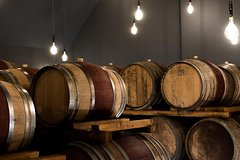 "Tasting ""Le Bessole"" of Valpolicella wines at the Accordini winery"