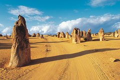 Imagen Pinnacles Desert, Koalas, and Sandboarding 4WD Day Tour from Perth