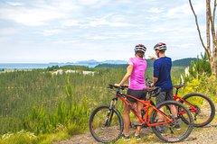 Imagen Waitangi Mountain Bike Park Experience