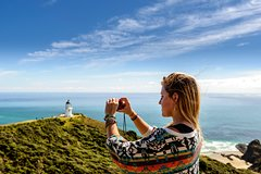 Cape Reinga and 90 Mile Beach Tour from Bay of Islands