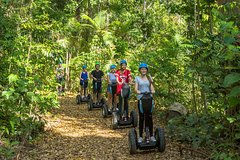 Imagen Whitsunday Segway Rainforest Discovery Tour