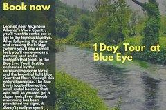 Visit Butrint Antic City  Blue Eye Springs Ksamil and Lekursi Castle (1day)