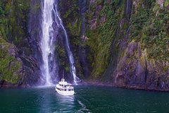 Imagen Full-Day Luxury Milford Sound Tour by Coach and Cruise from Queenstown