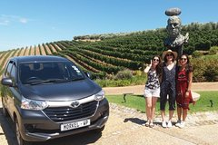 Cape Winelands Private Tour