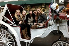 Central Park Horse & Carriage Tour - 1 Hour - Up to 4 Adults