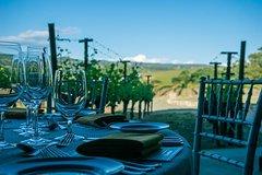 Frascati 3-Hour Wine Tasting PrivateTour
