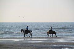Horse riding on the Beach Rhodes