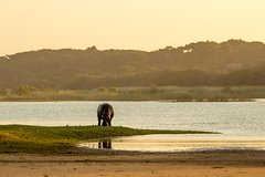 7 Day Kruger Zululand Safari Package