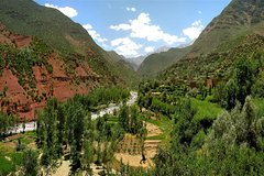 1 Day private excursion to High Atlas Mountains and Ourika Valley