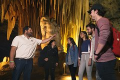 Animal Experience Programme (Learn Conversational English And Travel)