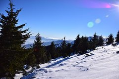 Imagen One day hiking with snowshoes on Vitosha