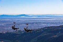 3 hour Christchurch City Tour with Ziplining at Christchurch Adventure Park