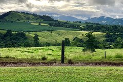 Tableland Tasting Tour