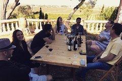 Imagen Valencia's Wine Region Tour