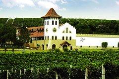 Moldova Winery * Chateau Purcari and Asconi Cellar
