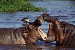 3 days Serengeti and Ngorongoro creater