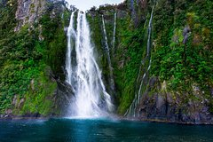 Imagen Full-Day Milford Sound and Fiordland National Park Tour including Milford Sound Cruise and BBQ Lunch from Te Anau