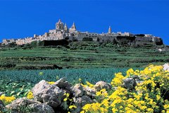 Mdina, Rabat, Dingli cliffs, San Anton gardens, Ta' Qali & Mosta guided tour