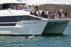 Imagen The Peppermint Bay Lunch Cruise from Hobart