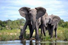 4 Night Kruger safari and Blyde Canyon