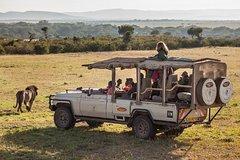 Cape town private - The Big five safari Tour