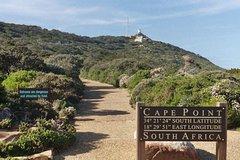 Cape Peninsula Full Day Tour