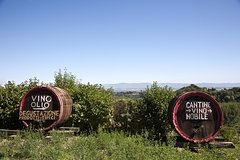 Chianti Region and San Gimignano including wine tasting and light lunch