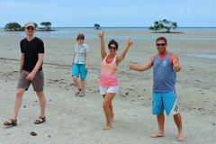 Daintree Rainforest, Cape Tribulation, Mossman Gorge Small-Group Day Tour