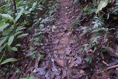 NamHa evergreen forest, 2days trekking-camping
