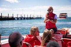Imagen Rottnest Island Tour from Perth or Fremantle including Adventure Speed Boat Ride