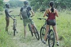 3 Hour Bicycle Nature Tour iSimangaliso Wetland Park