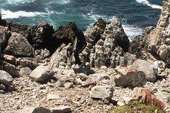 Cape Penensula Tours
