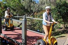 Gold Coast 60-Minute Segway Broadwater Parklands Tour