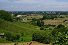 Wine tasting Tour Lombardy & the city of Lodi private guided tour