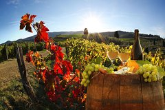 Bella Toscana Private tour: San Gimignano & 2 wineries Chianti, SuperTu