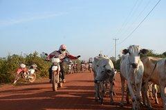 Cambodia Motorbike Tour Phnom Penh to Siem Reap 3 days