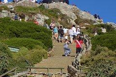 Cape Peninsula Boulders and Kirstenbosch Botanical Garden Tour