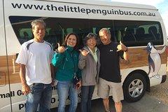 Imagen Budget Penguin Express Tour from Melbourne