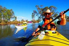 Cohuna Lagoon 3 hour Kayak Eco Tour
