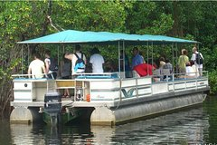 Black River Safari Tour from Montego Bay