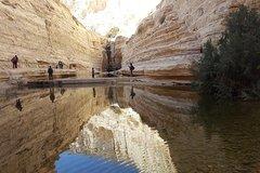 Into the desert tour