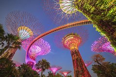 Gardens by the Bay with 2 Flower Dome + River Cruise + Marina Bay Sands Skypark