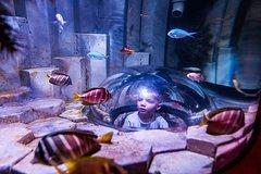 Imagen Billet coupe-file: billet d'entrée à l'aquarium SEA LIFE de Melbourne
