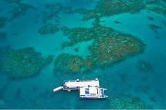 Arlington Reef Special - Express Outer Great Barrier Reef Cruise from Cairns