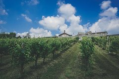 Imagen Half-Day Wine Tour From Milan