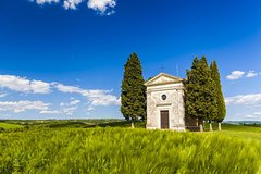 Val d`Orcia private tour: Montalcino, Pienza and Montepulciano