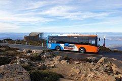 Imagen Hobart Hop-On Hop-Off Bus & kunanyi Mt Wellington Tour